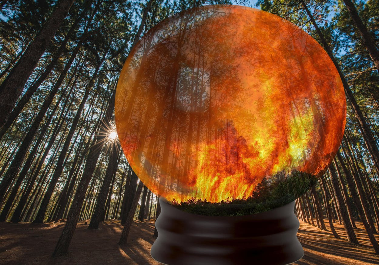 'A Crystal Ball' To Stop Wildfires